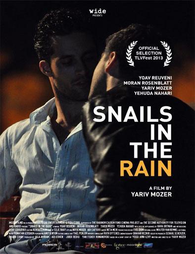Poster de Snails in the Rain