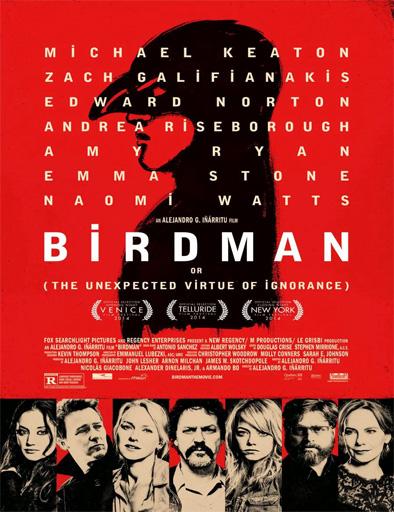 Poster de Birdman
