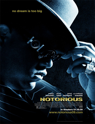 Notorious (2009) [DVDRip] [Sub Español] [1 Link] [MEGA]
