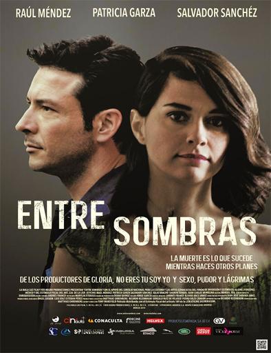 Entre Sombras [DVDRip] [Latino] [1 Link] [MEGA]