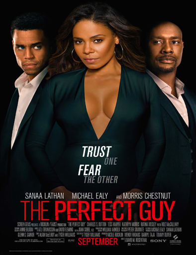 Poster de The Perfect Guy