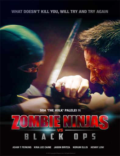 Poster de Zombie Ninja vs Black Ops
