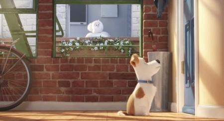 Ver La vida secreta de tus mascotas (2016) online