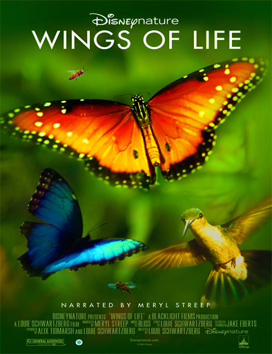 Wings of Life (Alas de la vida)