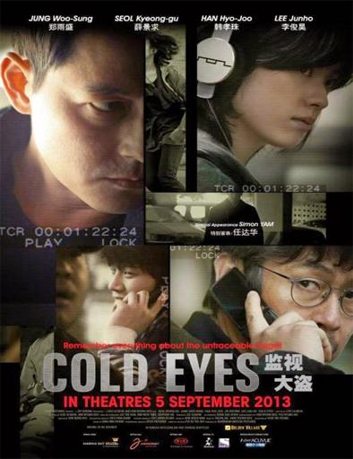 Poster de Cold Eyes (Vigilancia extrema)