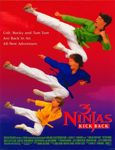 Poster de Tres pequeños ninjas 3