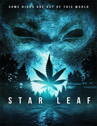 Poster de Star Leaf
