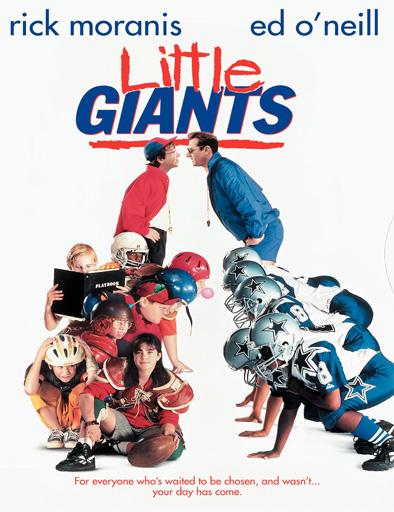 Pequeños Gigantes (1994) [DVDRip] [Latino] [1 Link] [MEGA]