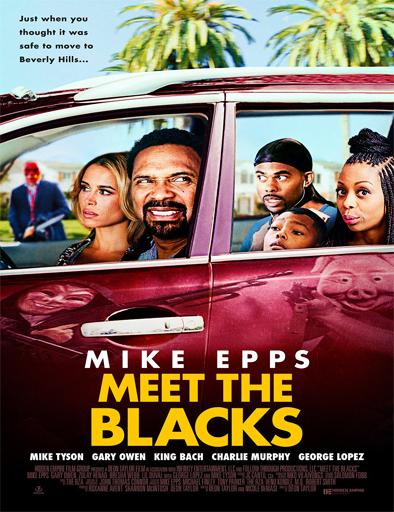 Poster de Meet the Blacks