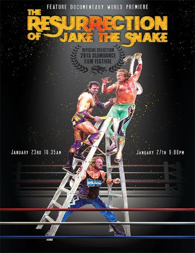 Poster de The Resurrection of Jake The Snake Roberts