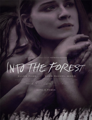 Poster de Into the Forest
