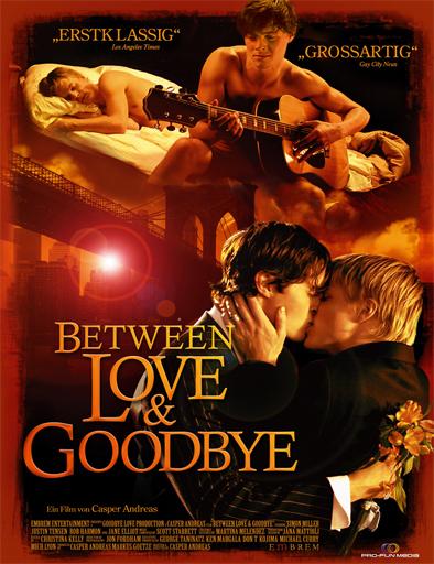 Poster de Between Love and Goodbye