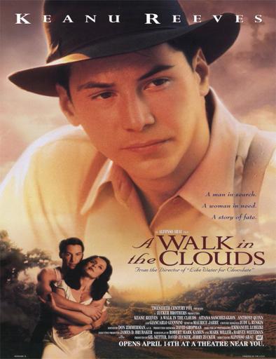 Poster de A Walk in the Clouds (Un paseo por las nubes)