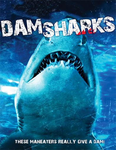 Dam Sharks (2016) online