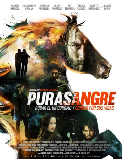 Purasangre (2016) [BrRip 720p][Latino][MEGA]