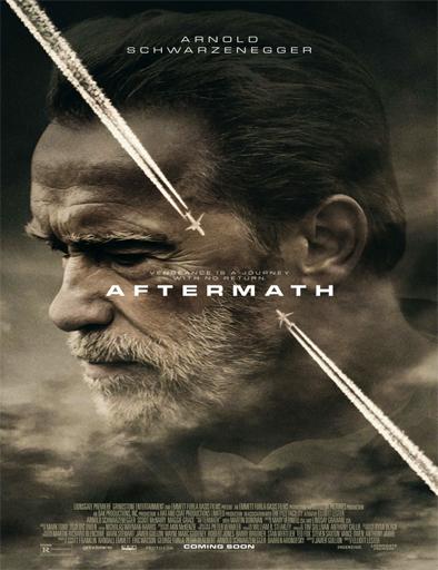 Poster de Aftermath (Una historia de venganza)