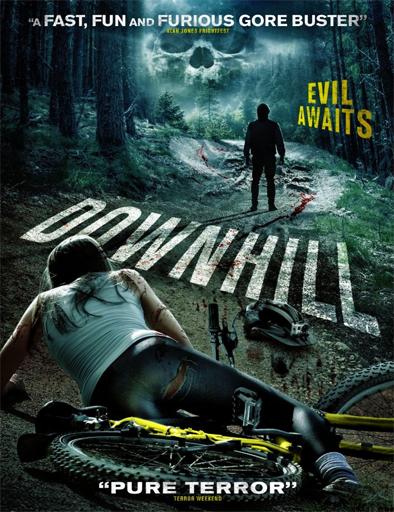 Poster de Downhill