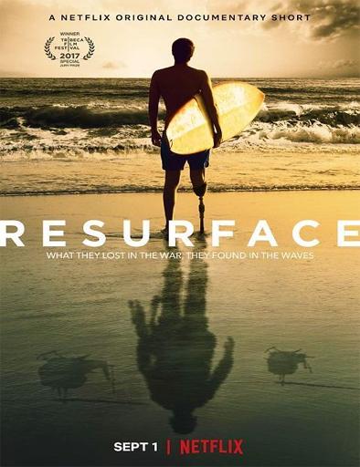 Poster de Resurface