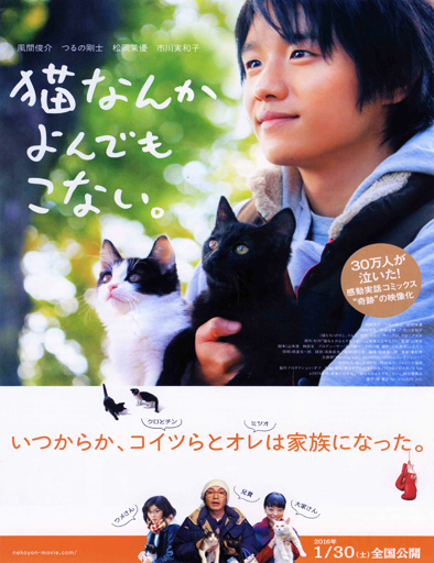 Poster de Cats Don't Come When You Call