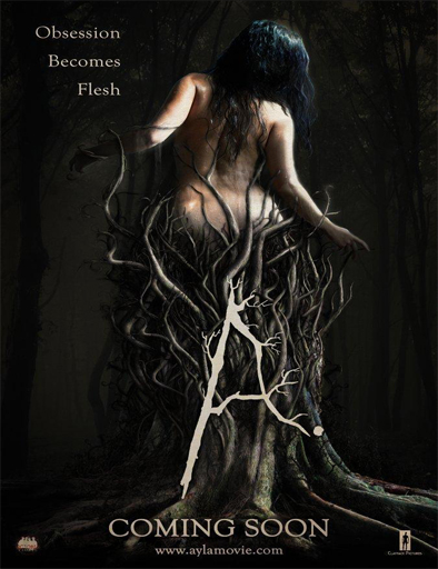Poster de Ayla