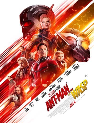Poster de El Hombre Hormiga y la Avispa