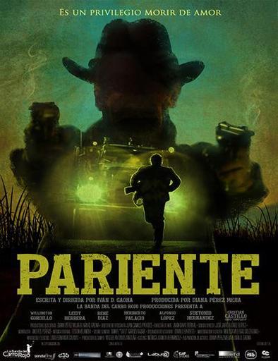 Pariente (2016) [DVDRip] [Latino] [1 Link] [MEGA] [GDrive]