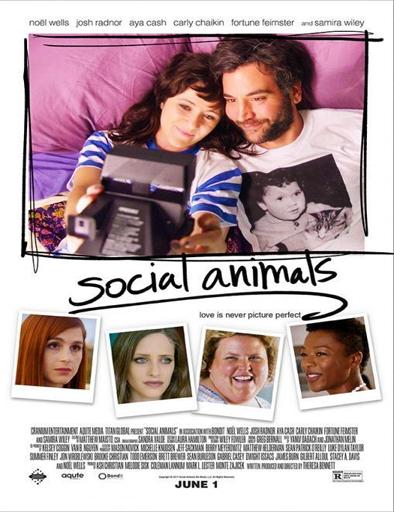 Poster de Social Animals (Amor y disfunción)