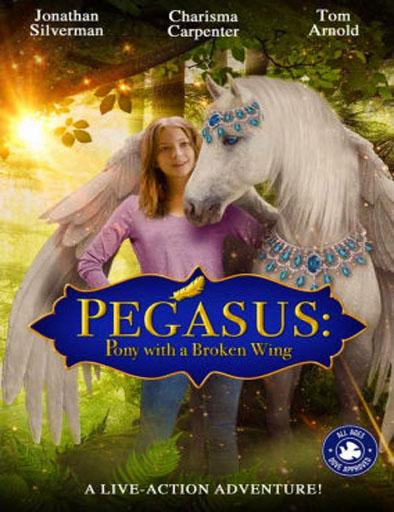 Poster de Pegasus: Pony with a Broken Wing