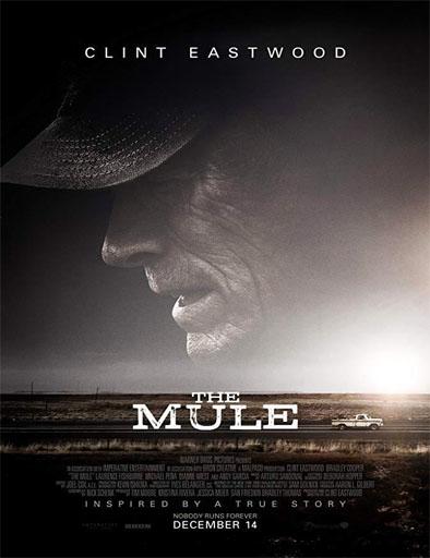 Poster de The Mule (La mula)