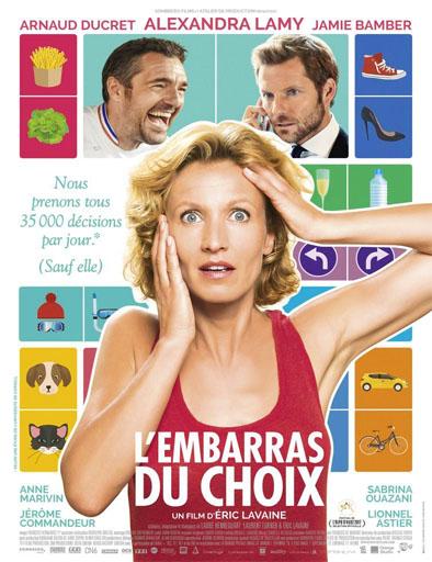 Poster de L'embarras du choix
