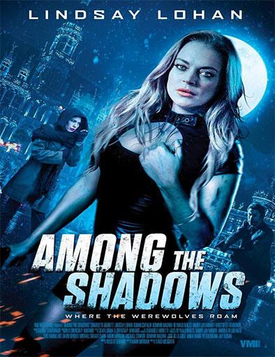 Poster de Among the Shadows