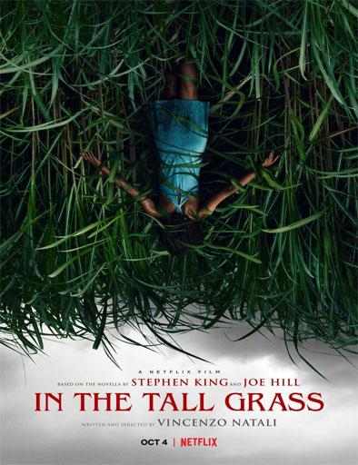 Poster de In the Tall Grass (En la hierba alta)