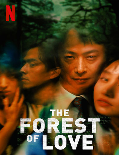 Poster de The Forest of Love