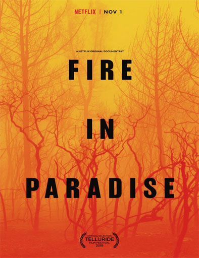 Poster de Fire in Paradise (Paradise en llamas)