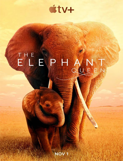 Poster de The Elephant Queen