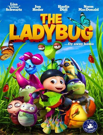 Poster de The Ladybug