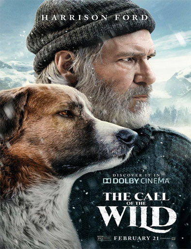 Poster de The Call of the Wild (La llamada de lo salvaje)