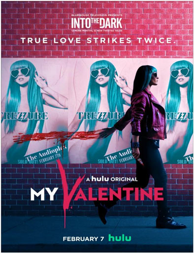 Poster de  My Valentine