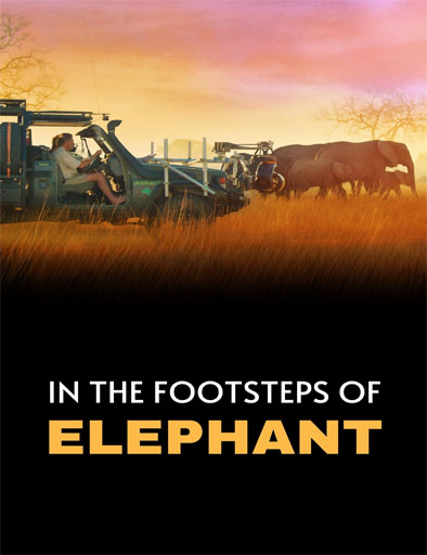 Poster de In the Footsteps of Elephant