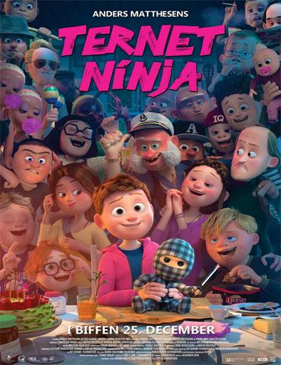 Poster de Ternet ninja
