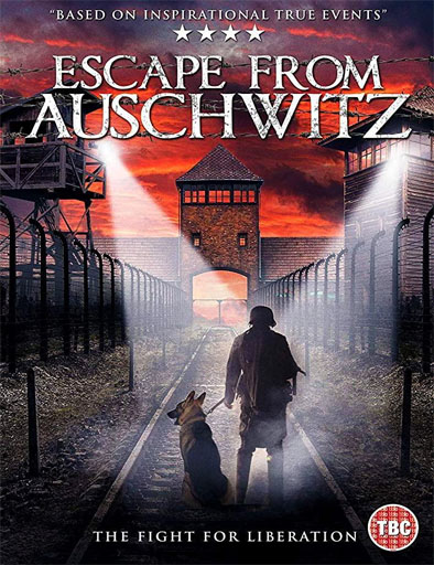 Poster de The Escape from Auschwitz